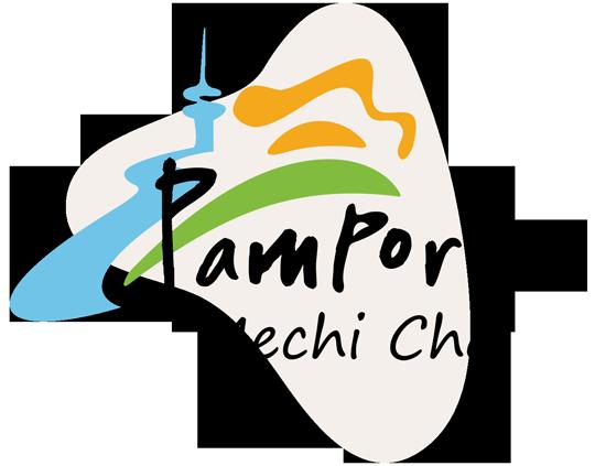 mechi chal logo live chat alternative