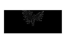 nandini resort logo live chat alternative logo